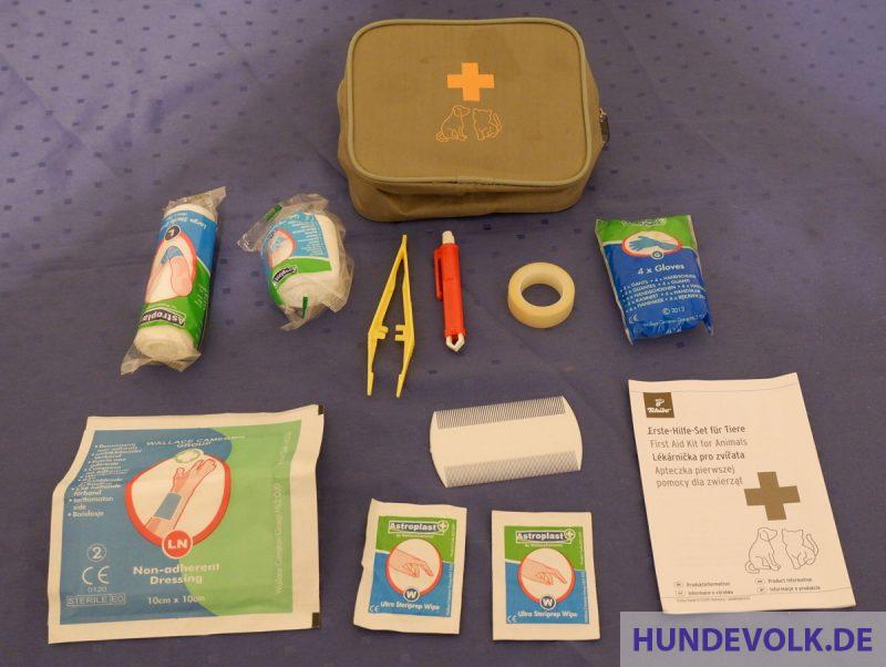 Inhalt eines Erste-Hilfe-Sets für Hunde